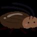 すまん✋😡北海道にゴキブリ輸出してええか?😡
